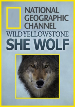 Дикий Йеллоустоун: Волчица / Wild Yellowstone: She Wolf (2013) HDTVRip / HDTV 720