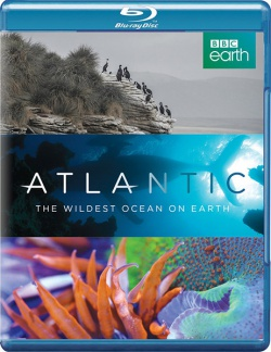 Атлантика: Самый необузданный океан на Земле / Atlantic: The Wildest Ocean on Earth - 1 сезон (2015) HDRip / BDRip 720