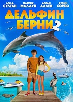Дельфин Берни 2 / Bernie the Dolphin 2 (2019) WEB-DLRip / WEB-DL (720p, 1080p)