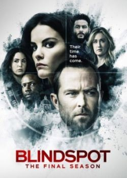 Слепая зона / Blindspot - 5 сезон (2020) WEB-DLRip / WEB-DL (720p, 1080p)